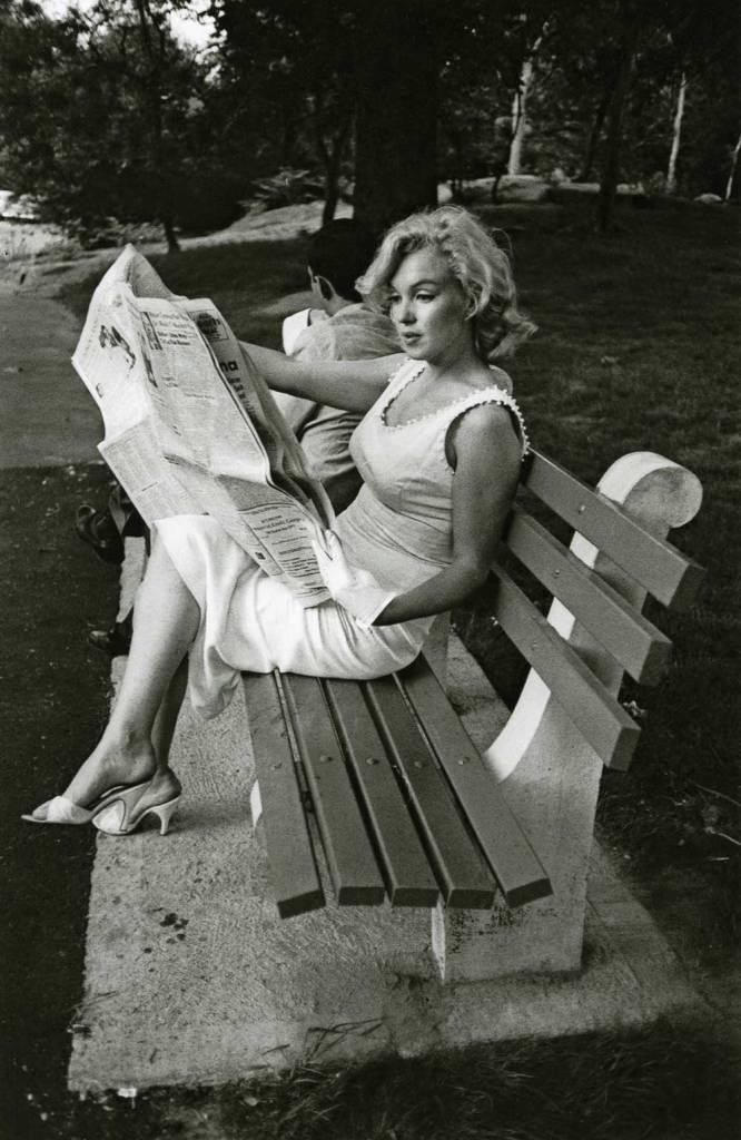 Reading-paper-park